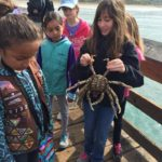 girls-crabs